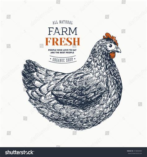 egg template illustration farm fresh eggs design template engraved stock vector