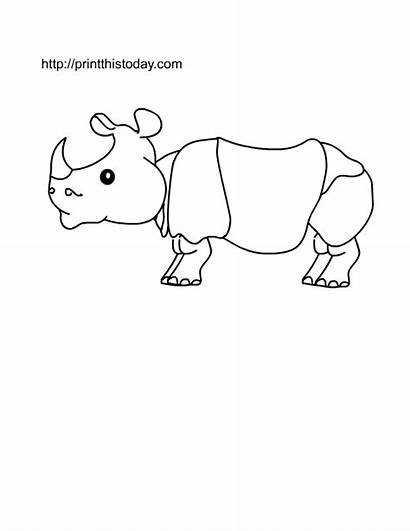 Coloring Printable Animals Animal Wild Pages Zoo