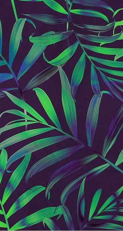 Iphone Hawaii Tropical Leaves Wallpapers Wallpaperaccess Backgrounds