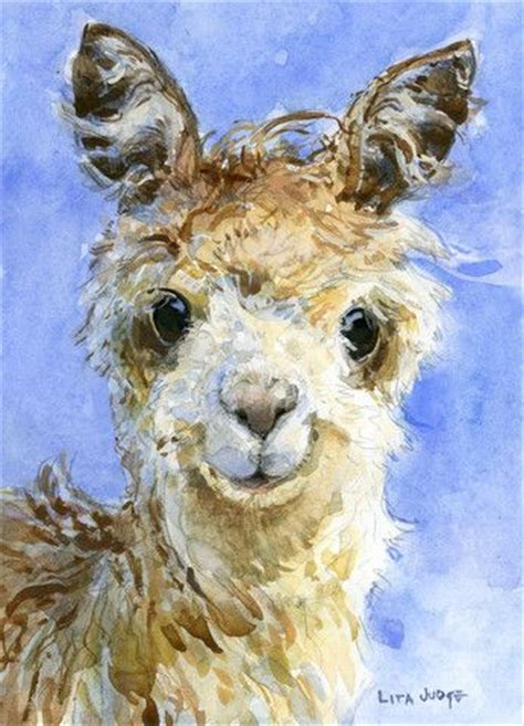 alpaca  art pinterest alpacas  watercolors