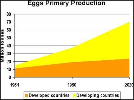 PROTEIN SOURCES FOR THE ANIMAL FEED INDUSTRY
