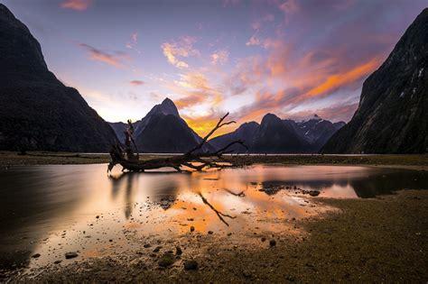 Fiordland New Zealand Switchback Travel