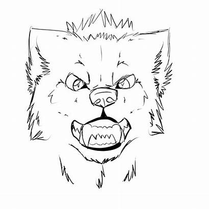 Wolf Face Sketch Drawing Growling Head Easy