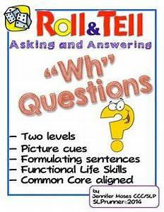Speech Therapy - Wh /Yes & No Questions on Pinterest | Wh ...