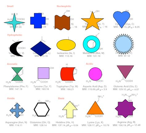 different kinds of shapes image picture what are the