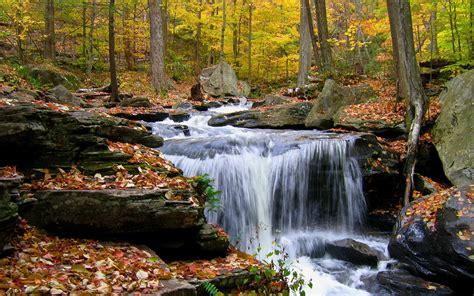 Little Waterfall Hd Wallpaper Background Image 2560x1600 Id160819 Wallpaper Abyss