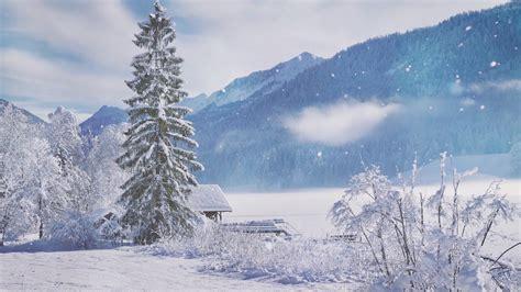 christmas winter wonderland background video  relaxing