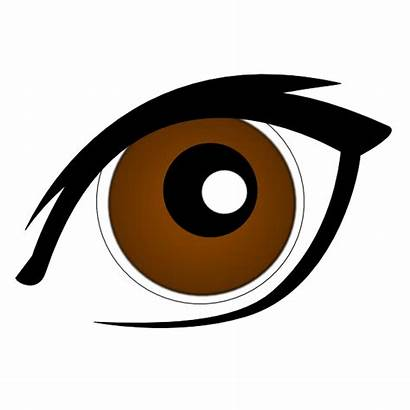 Eye Brown Clipart Cartoon Brow