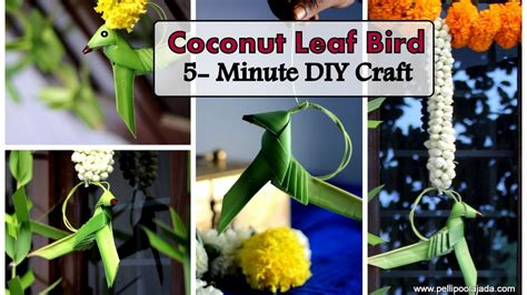 coconut leaf parrot bird type  youtube