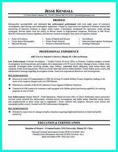 Medical Records Clerk Resume Resume For Skills Financial Analyst Resume Sample