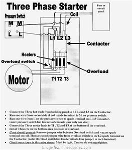 208 Volt 3 Phase Wiring Diagram