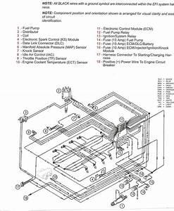 Skeeter Wiring Diagram