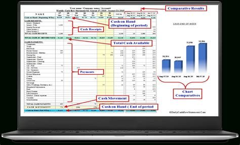 daily cash flow spreadsheet  cash flow statement