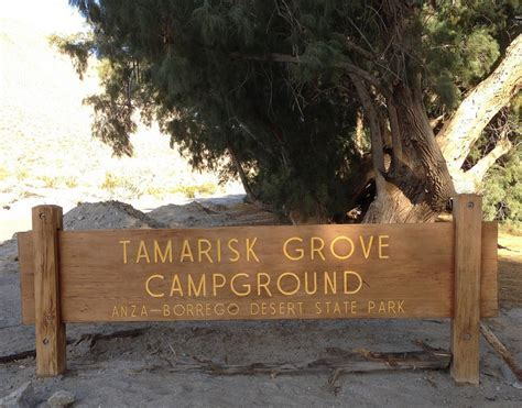 Tamarisk Grove Campground   Anza Borrego SP   NextCampsite