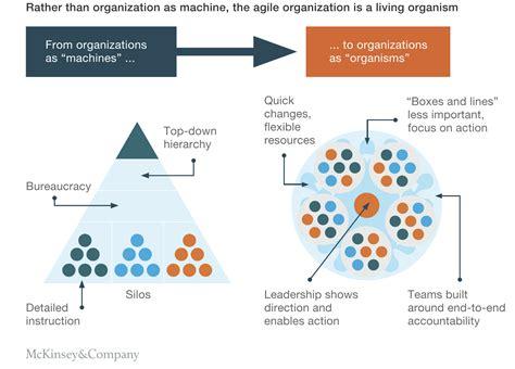 network organization circle  contemporary   empower