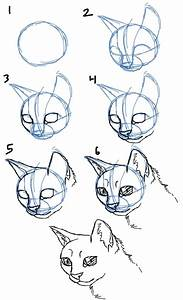 Drawing, A, Cat, Face, How, To, Draw, Cat, Faces, Heads, 4, View
