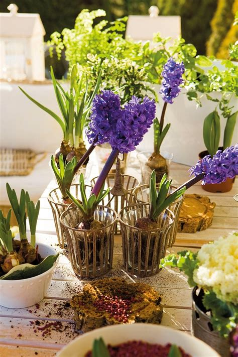 diy spring table decorations  blooming centerpieces