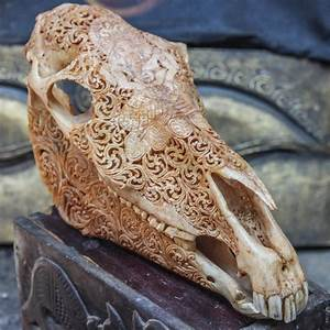 Hand Carved Horse Skull Real Mule Ganesha   Animal Skull