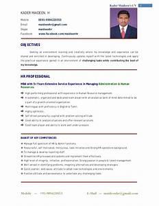 curriculum vitae sample in uae 100 original With latest professional resume format