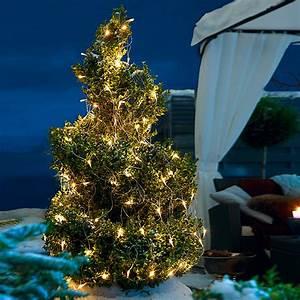 Weihnachtsbeleuchtung Außen Baum : tween light led lichtnetz 2 x 1 5 m 160 flammig au en bauhaus ~ Orissabook.com Haus und Dekorationen