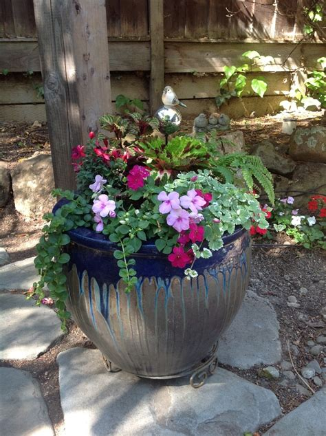 344 Best Images About Shade Container Gardening On