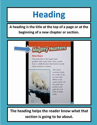 Nonfiction Text Features Heading Informational Students Classroom