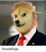Doge Memes