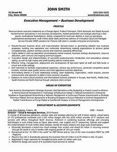 click here to download this executive director resume With it executive resume template