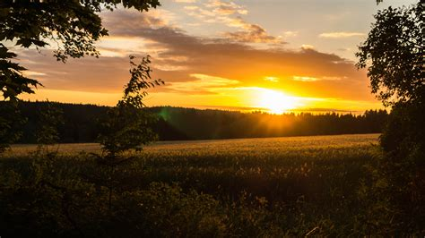 Sunset, Landscape, Field, Sweden Hd Wallpapers Desktop