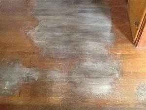removing dog urine stains from hardwood floors hometalk With how to clean dog urine from hardwood floors