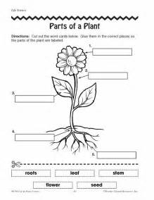 Plants Worksheets Parts Of Plants Worksheets Click Here Parts Of A Plant Pdf To The Document Stuff
