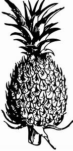 Best Pineapple Clipart #3200 - Clipartion.com