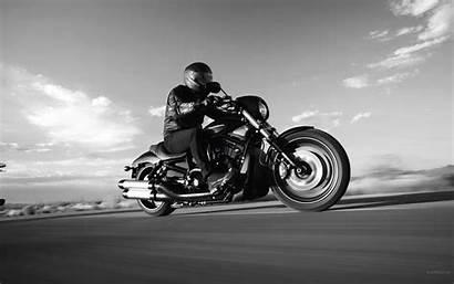 Wallpapers Harley Davidson Rod Night Special Vrscdx