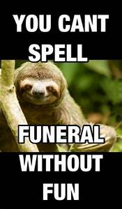 rape sloth   Funny Stuff   Pinterest   Sloths