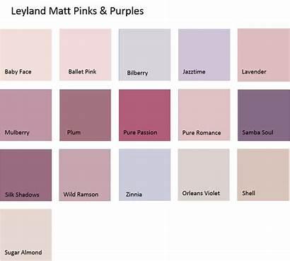 Emulsion Colour Leyland Pinks Coloured 5ltrs Purples