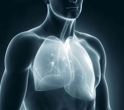 pleurisy  symptoms  treatments medical news today