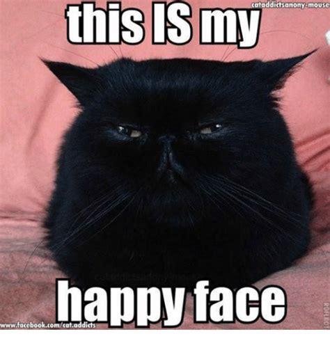 Grumpy Meme Face - cataddictsanony mouse this my happy face wwwfacebookcomcataddicts cats meme on me me
