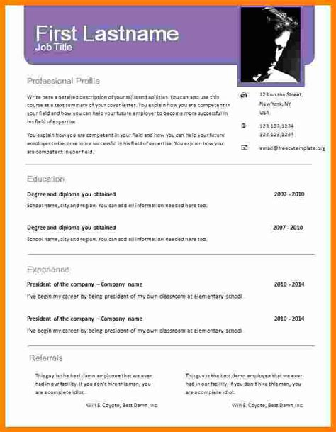 Professional Cv Format Word Document by 6 Cv Format Word Document Theorynpractice