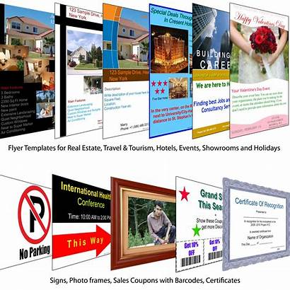 Flyer Templates Flyers Business Brochures Brochure Mail