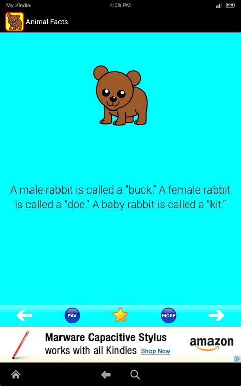 amazoncom animal facts  fun cool cute facts