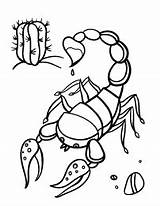Scorpion Coloring Pages Printable Coloringcafe Sheet Colouring Sheets Animal Pdf Stained Glass Open Mexican Flag sketch template