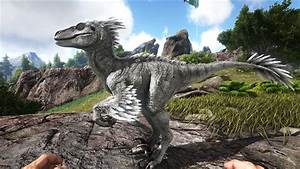 Raptor Official ARK Survival Evolved Wiki