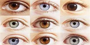 Shades Of Green Eyes Chart The Rarest Eyes Color In The World Guide Eye Color Chart