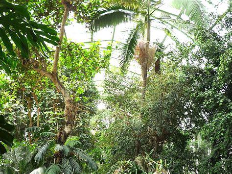 Www Plantes Et Jardins Reduction by Jardin Des Plantes 224 Paris Gratuit Pour Les Ch 244 Meurs Et