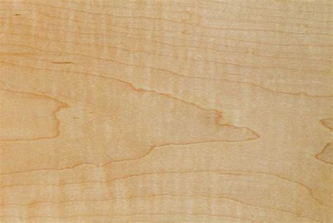 wood species archive cabinets  graber