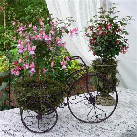 Fuksija dārzā: kultivēšana un kopšana, reprodukcija, foto