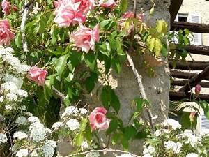 Salon De Jardin Romantique : cr er un jardin romantique mode d 39 emploi ~ Dailycaller-alerts.com Idées de Décoration