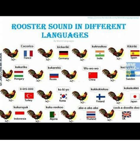 Different Languages Meme - different languages meme rooster sound in different languages kikiriki cocorico ikukruukuu