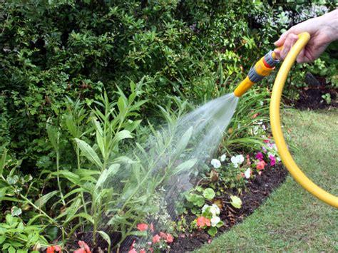 Garten Pflanzen Ohne Gießen by Pflanzen Im Garten Richtig Gie 223 En