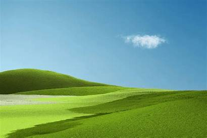 Surface Microsoft Wallpapers Bliss Windows Xp Grass